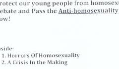 Protect our young people from homosexual: Debate and Pass the Anti-homosexual Bill now!